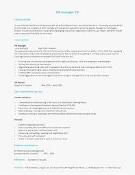 Hr Director Resume Best Hr Director Resume Professional Template Hr Director Resume