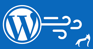 Image result for wordpress speed