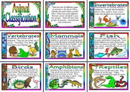 Ks2 Science Teaching Resource Animal Classification Printable