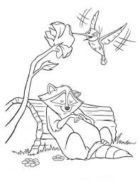 Small Picture Pocahontas raccoon sleeping and colibri bird coloring page camp