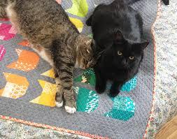 The Cat Mini Quilt — Oh Fransson & catquiltwithcats.jpg Adamdwight.com