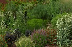cooperative extension s pollinator paradise garden