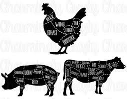 Chicken Pork Beef Pig Cow Poultry Meat Cut Chart Svg Png Studio Cuttable Quote For Silhouette Cameo Cricut Vinyl