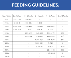 Fromm Large Breed Puppy Feeding Chart Best Picture Of
