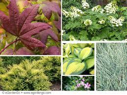 year round flower garden plan garden plan attractive year round with fab fall finish flower garden