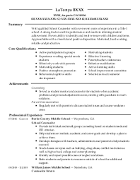 Resume For School Counselor Professional Resume Templates