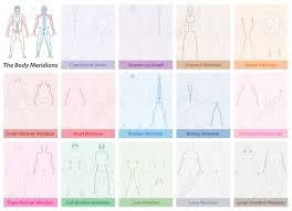 Body Meridian Chart With Names And Different Colors Traditional