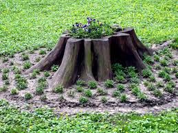 outdoor tree stump decorating ideas