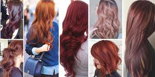 Elegant Copper Red Hair Color Chart Image Of Hair Color