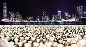 HK to celebrate <b>Valentine's Day</b> with 25000 <b>glowing</b> roses EJINSIGHT