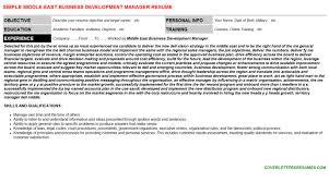 Middle East Business Development Manager Resume Cover Letter Cv