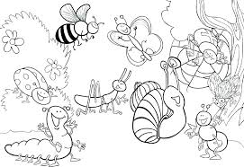 beautiful coloring stag beetle page source for kids and free coloring pages insects colouring bugs to print out pictures of beautiful for kids insect