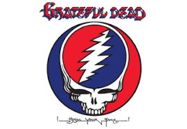 Steal Your Face Grateful Dead auf Vinyl online kaufen | SATURN