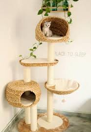 Accessories: Cat Tree Ideas In The Wall - Indoor Cat Tree
