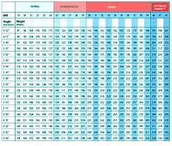 Tuckurtummy Bmi Charts