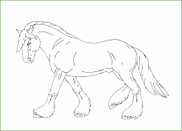 4 Paard Kleurplaten 05356 Kayra Examples