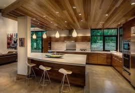 Great Stylish And Atmospheric Mid Century Modern Kitchen Designs Nice Ideas