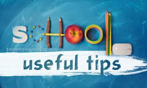 Education In Schools Essay School Essay Useful Tips Findwritingservice Com