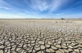 essay on drought watering hope a guest essay lost coast outpost  paris attack why climate change and terrorism are connected paris attack why climate change and terrorism