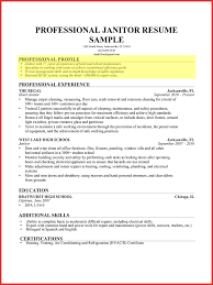 Profile Section Of A Resume Sectional Ideas