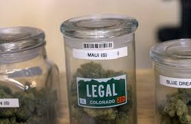 more colorado businesses dropping pot from pre employment tests the denver post