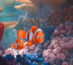 life lessons from finding nemo disney baby