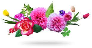 Картинки по запроÑу цветы