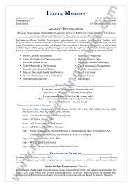 Functional Executive Format Resume Free Inspirational Sample