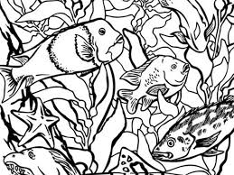 Coloring Pages At The Monterey Bay Aquarium