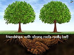 Islamic Quotes About Friendship friendship in islam quotes The Faith 88