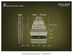 Population Demography Illustration Population Pyramids Chart