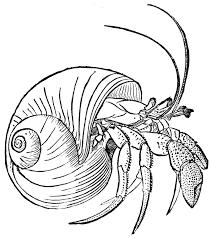 Crabe 106 Animaux Coloriages Imprimer