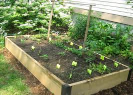 easy and simple diy square foot wood raised bed vegetable gardens with simple wire trellis ideas