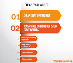 essay writer cheap  principles of auditing and other assurance  cheap essay writers amp best cheap essay writing services
