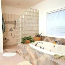 glass walls bathroom glamorous glass walls for bathrooms renovation bathroom with cladding on bathroom frosted glass glass walls bathroom
