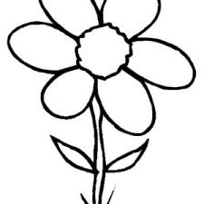 Small Picture Spring Flower in the Garden Coloring Page Color Luna
