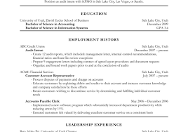 Basic Resume Sample Resume En Resume Sample Functional Resumes 100 100 Image Basic 59