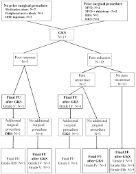 Branches Of Trigeminal Nerve Flow Chart Flowchart Of Prior Patient Treatment Post Gks Modalities