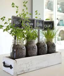 indoor gardening ideas. 10 Indoor Garden Ideas That Are Cheap And Easy Gardening R