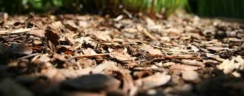 wood mulch s
