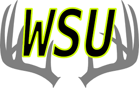 Wsu Logo Clip Art at Clker.com - vector clip art online, royalty ...