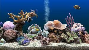SereneScreen Marine Aquarium 3.3.6369 + ...
