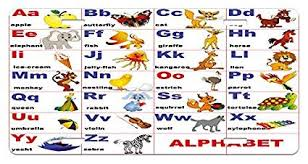 Amazon Com Zaeshe3536658 Educational License Plate