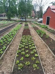 Kitchen Garden Farm Stacey Givens Side Yard Farm Kitchen Portland Creatives