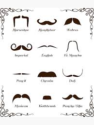 Mustache Styles Chart Mustache Style Identification Chart Photographic Print