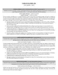 example of a perfect resumes executive resume samples professional resume samples