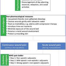 Flow Chart Showing The Various Cleansing Dressing And