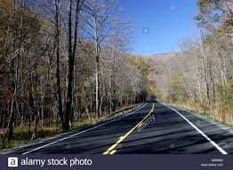 Paved Roadway And Bare Trees Stock Photo 11421867 Alamy