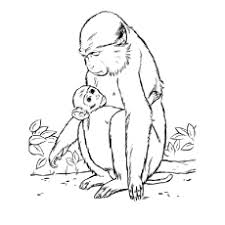 Sensational Design Baby Monkey Coloring Pages Printable Top 25 Free