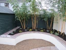 rendered concrete block raised bed with